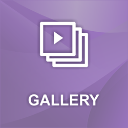 Picture of nopCommerce Image, Video, Picasa, Flickr, Vimeo, YouTube Gallery Plugin
