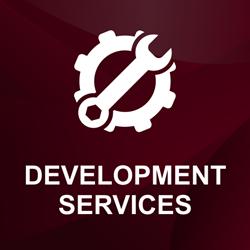 Picture of Dev Partner development services