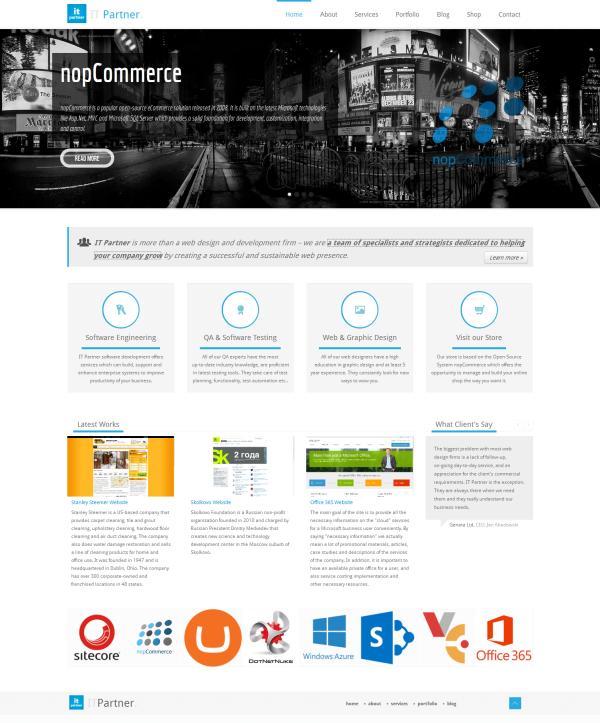 Dev-partner.biz website